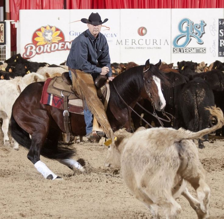 Lloyd Cox and One Time Royalty in their record breaking Open Futurity run.