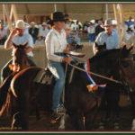 Jaye Hall & Daley's Playrio, Warwick Stallion draft 2009