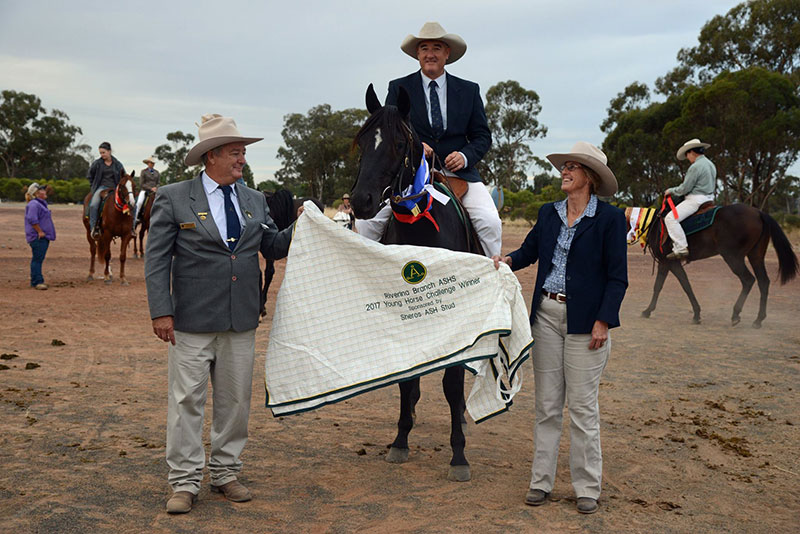 Barwalla Memphis & Mark Barton. Winner of the Riverina Branch ASH Young Horse Challenge.
