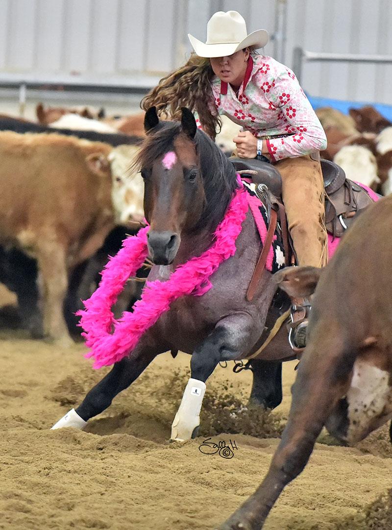 One Roan Peptos & Teresa Russo 2016 Pink Cutting.