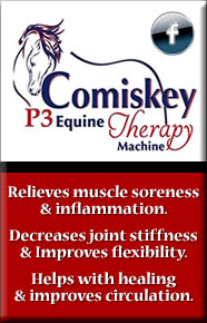 Comiskey P3 Equine Therapy Machine
