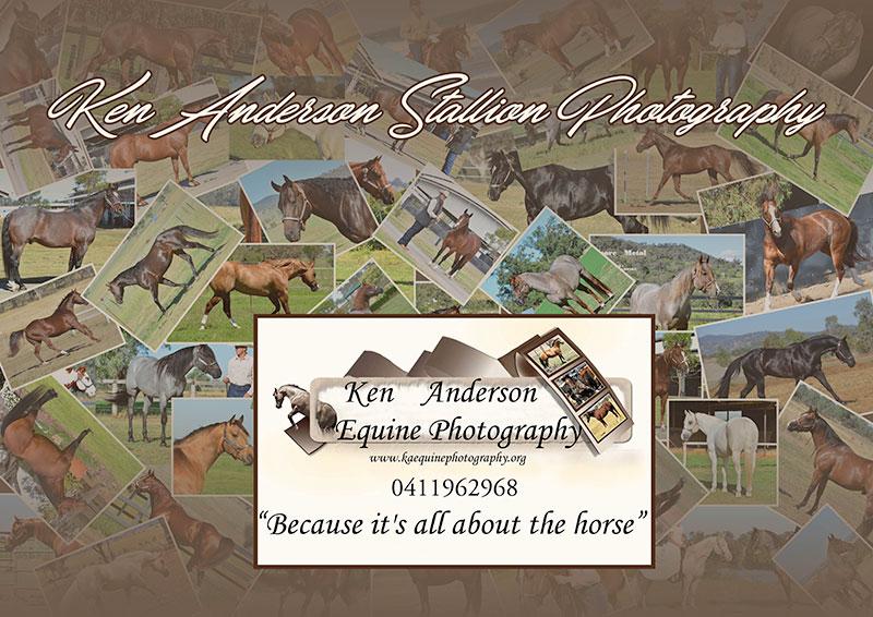 Ken Anderson Equine Photography.