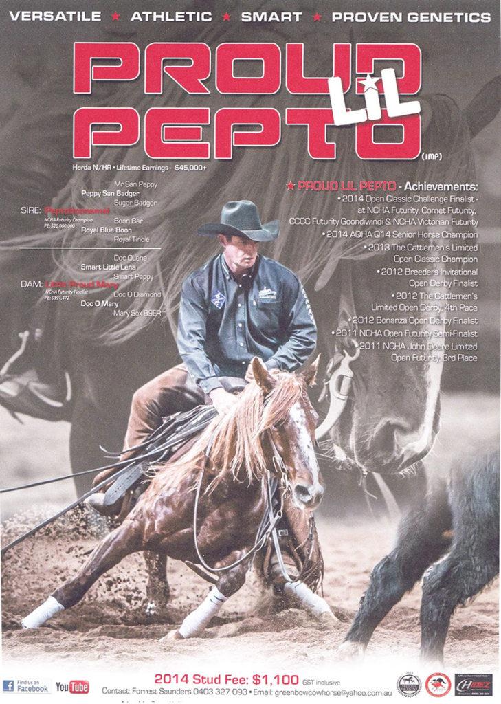 Ad by Australian Performance Horse Magazine, Tracey McClurg. 2014