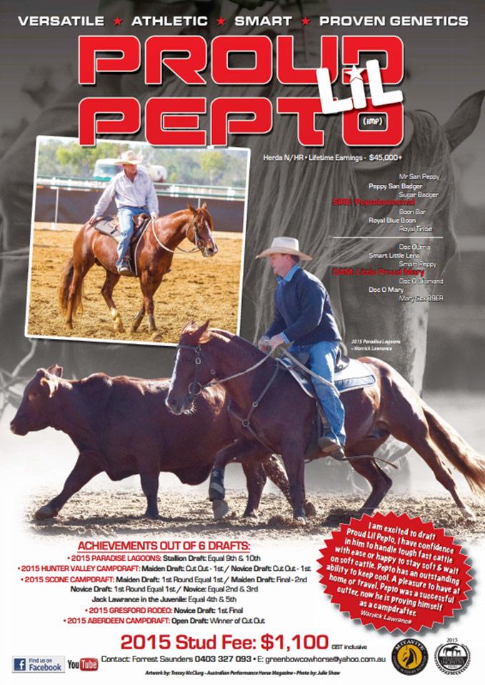 Ad by Australian Performance Horse Magazine, Tracey McClurg. 2015