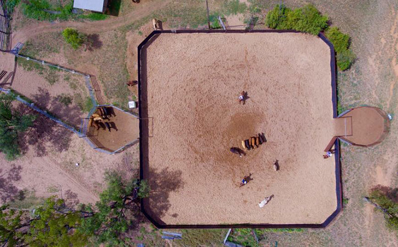 Jamie Seccombe Cutting Horses facilities