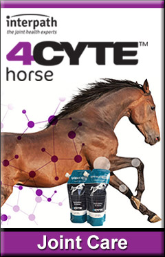 4Cyte Horse Joint Care