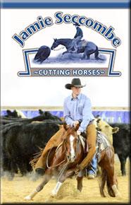 Jamie Seccombe Cutting Horses