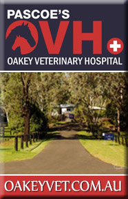 Pascoe's Oakey Veterinary Hospital