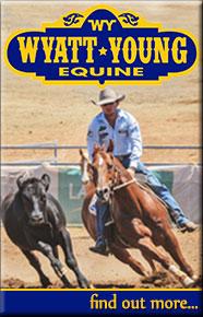 Wyatt Young Equine