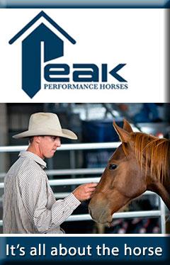Ad banner Peak Performance Horses
