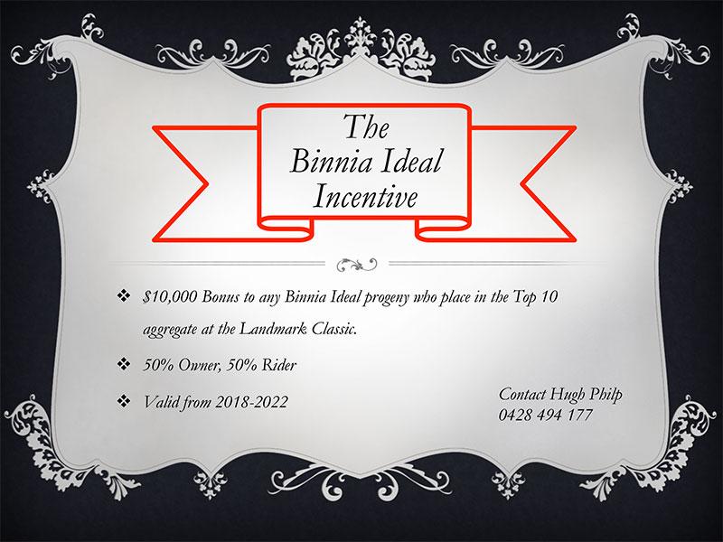 The Binnia Ideal Incentive