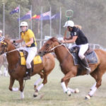 2 Mentors going head to head at Polocrosse test match between Aus and NZ  in February, Lucy Grills  is on Ropeley Park Jasmin and Beth Peaker NZ is on Sailor Moon Both mares competed in the World Cup. Both owned by Berragoon ASH Stud.